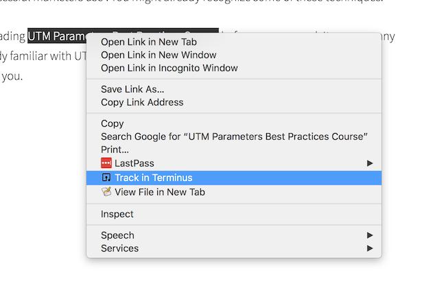 URL Builder Chrome Extension - Terminus